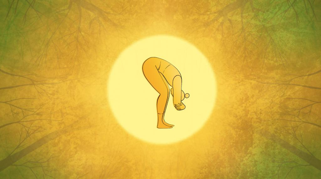 Pukka Herbs – Wellbeing Series